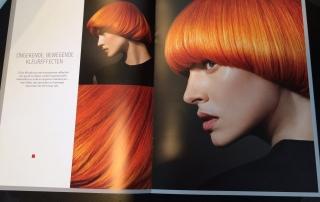 pure pigments-kieven-haarmode-blog-nicole